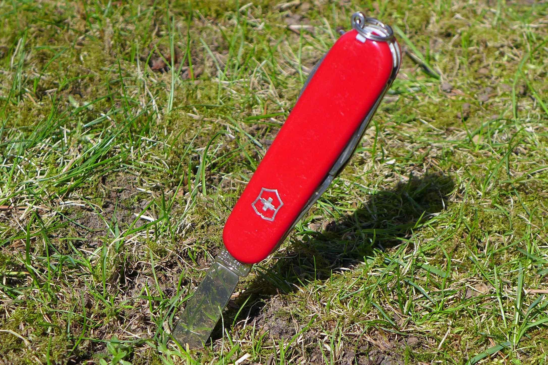 Ein rotes Schweizer Taschenmesser steckt mit der KLinge im Gras
