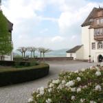 Porzellanmuseum in Fürstenberg: Weißes Gold