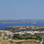 Erdbeeren aus Gozo