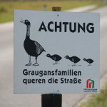 Warnschild: Ganserl Crossing!