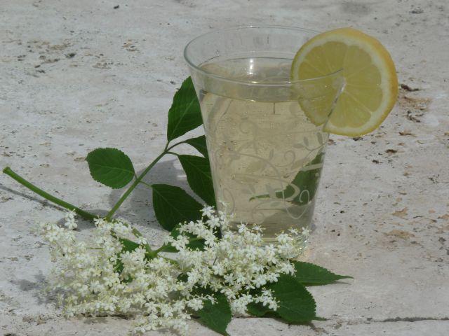 Eisgekühlz mit einer Scheibe Zitrone - lecker