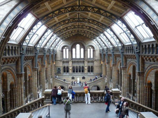 Die Halle mit dem riesigen Dinosaurier-Skelett und dem versteinerten Mammutbaum hat etwas von einer Kathedrale