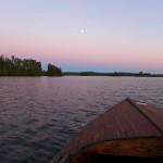 Ontario: Wo die wilden Bären wohnen