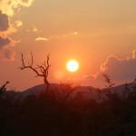 Elefantenbad im Safari-Camp