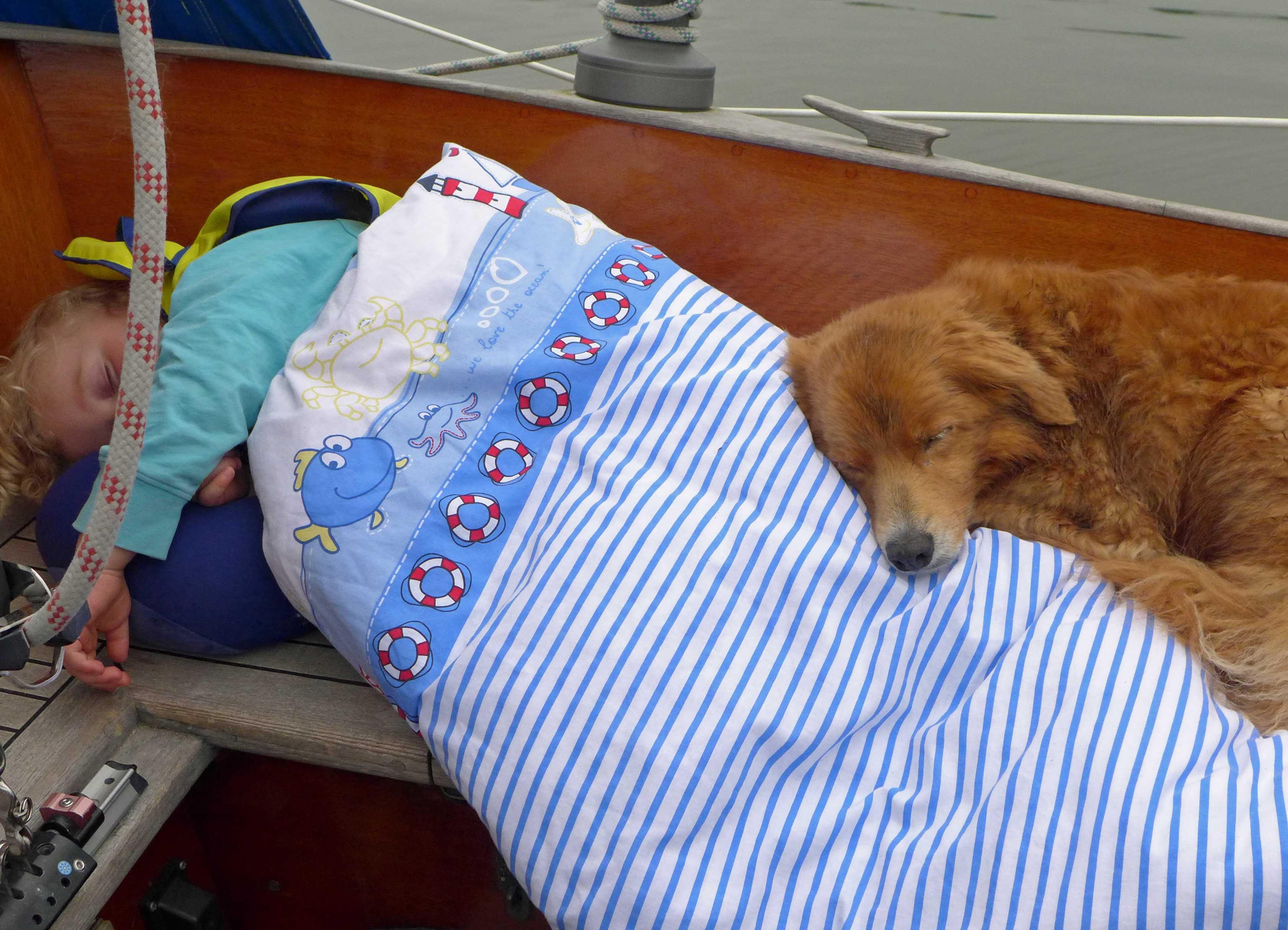 Auch auf dem Schiff sind die zwei ein herz und eine Seele