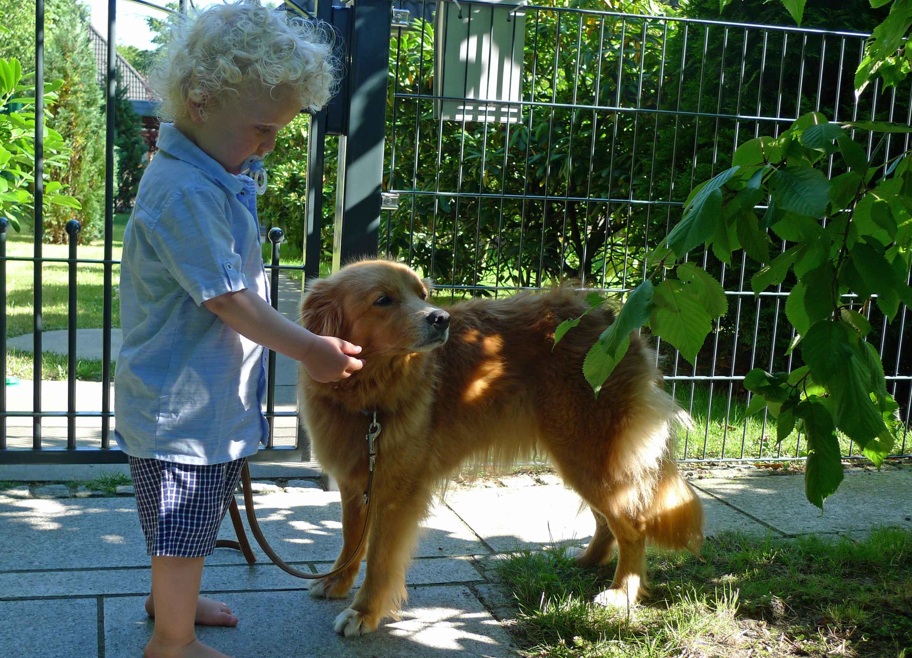 Kleinkind und Hund vor einem Gartentor