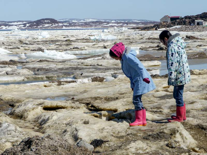 Forschend auf dem Eis in Cape Dorset