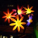 Beleuchtete Blumen