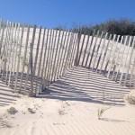 Long Island: Die Hamptons – meine zweite Heimat