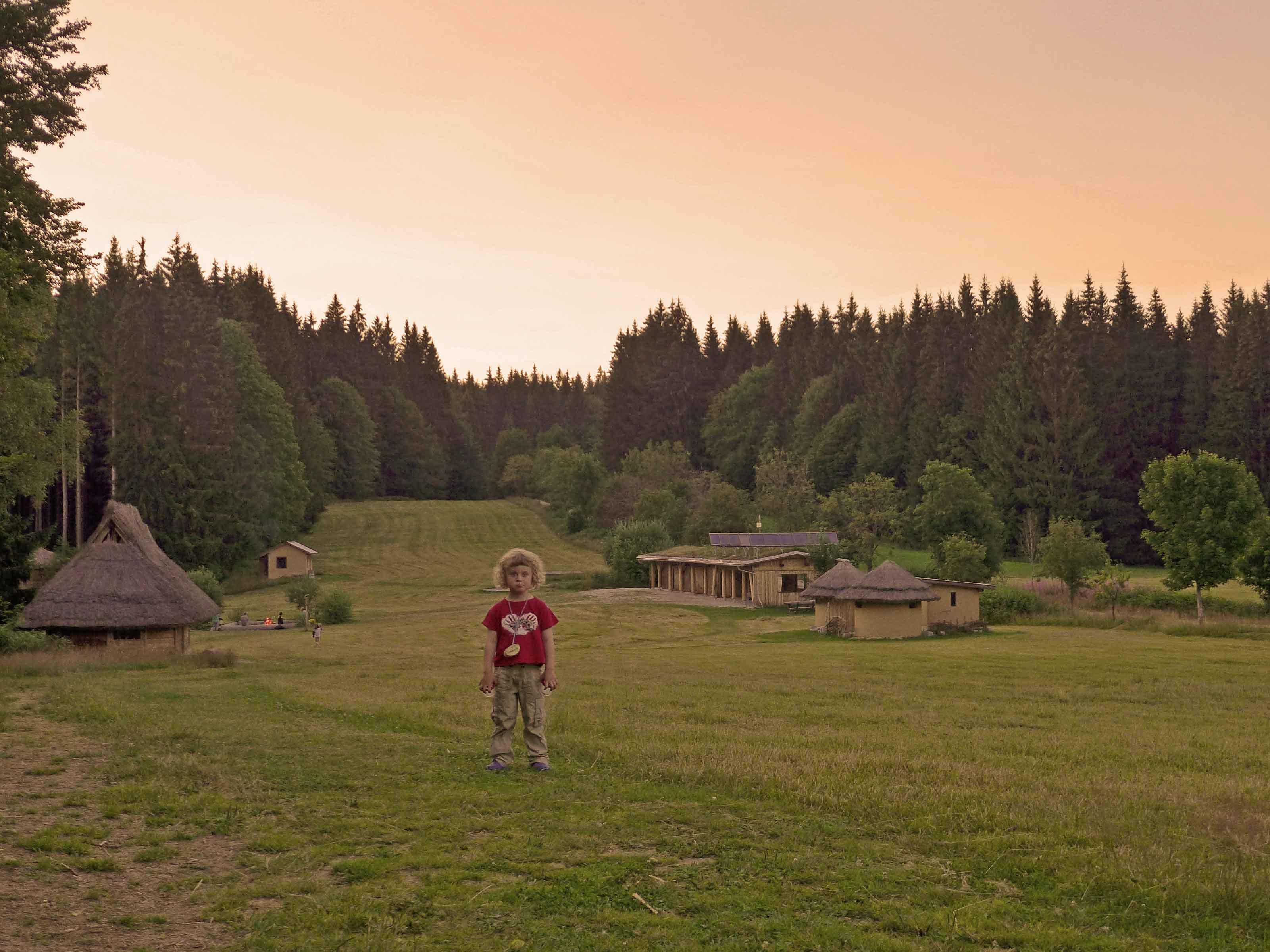 Blick über eine Waldlichtung mit dem Hauptgebäude vom Wildniscamp am Falkenstein