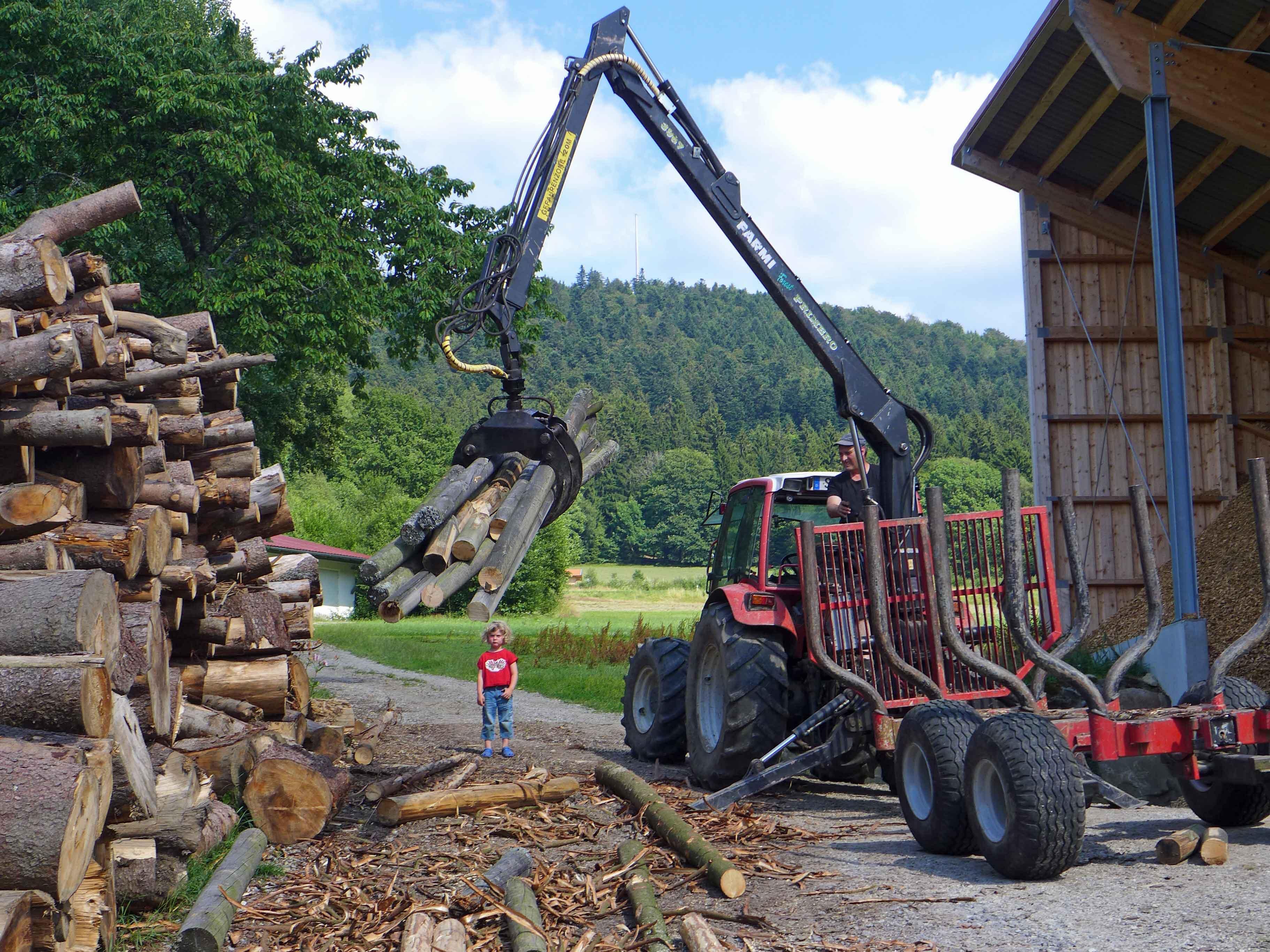 Ohne Holz kein Glas. Heute werden mit Holzspänen moderne Heizungen beheizt