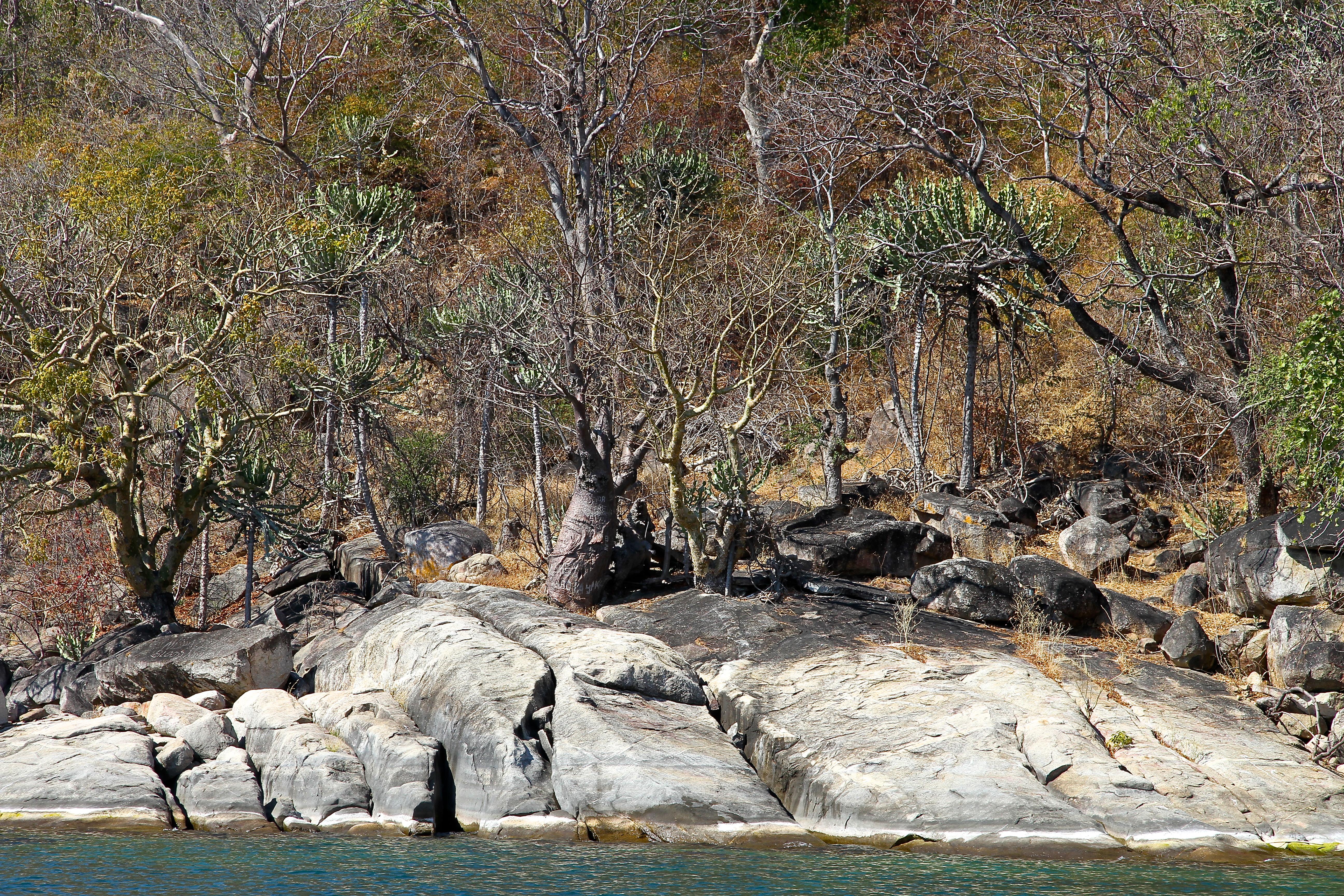 Reisefeder, Reiseblog, Blog, Afrika, Malawi, Safari, Malawisee, Lake Malawi