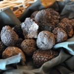Trüffel, Beaujolais, Safran & Co: Herbstliche Genuss-Orte
