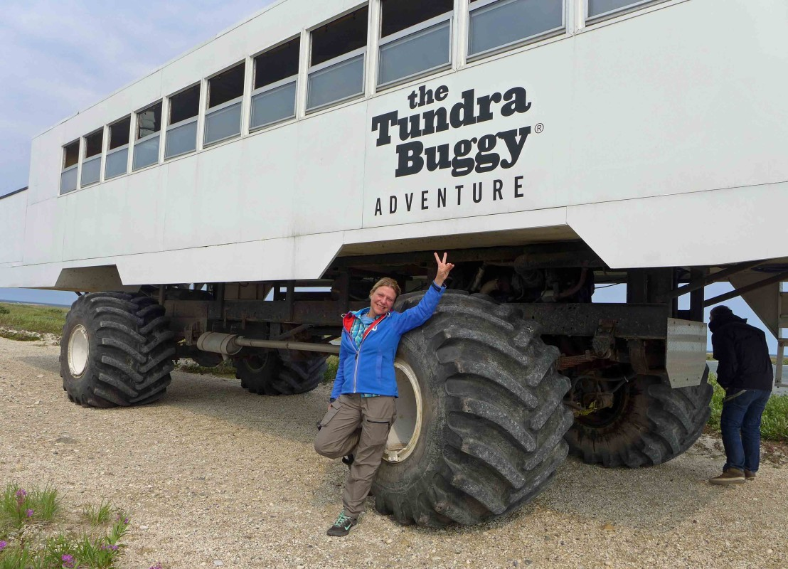 Tundra Buggy von Frontiers North in Churchill