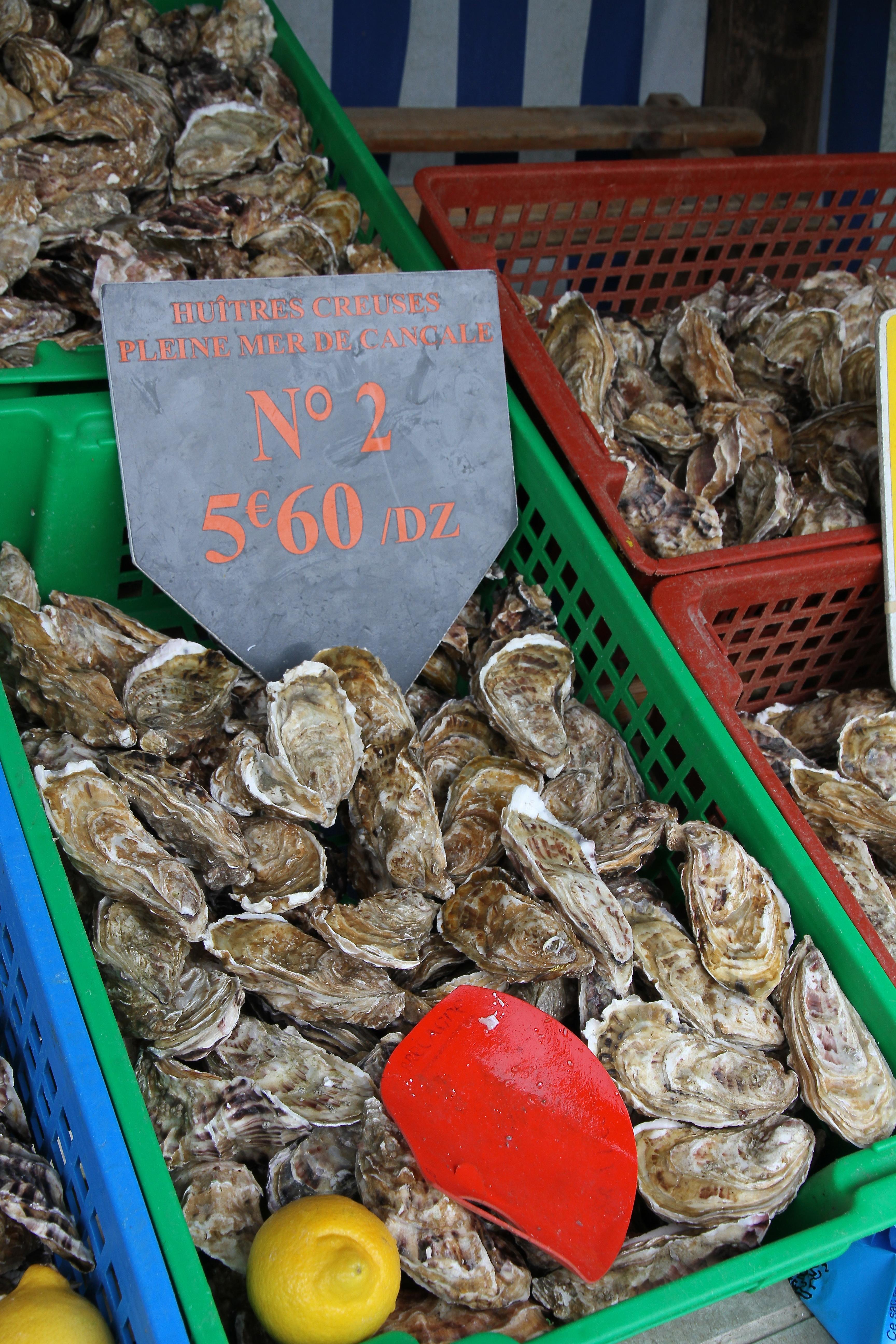 Austern, Frankreich, Bretagne, Strandfischer, Strandfischen, Meeresfrüchte, Delikatessen