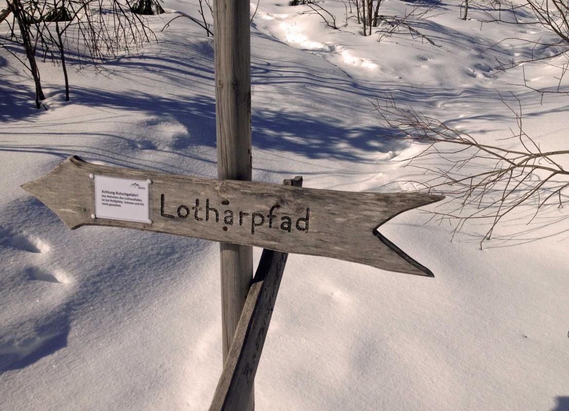 Schild zum Lotharpfad, einem Naturerlebnisweg im Nordschwarzwald, in der Nähe vom Schliffkopf