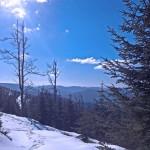 Winter im Nordschwarzwald