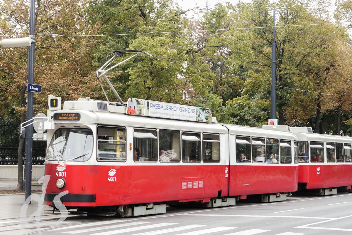 Die typische Wiener Straßenbahn lässt sich bestens zur Rundfahrt nutzen