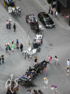 Von oben betrachtet wirkt das Gewusel auf dem Domvorplatz wie eine Ameisenstraße