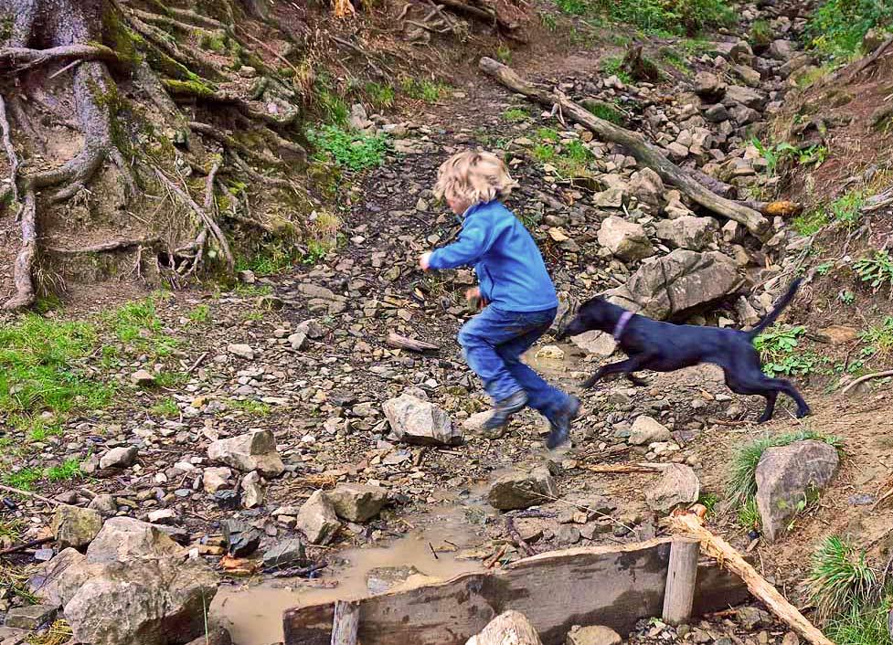 Kind und Hund hüpfen über einen BAch auf der Bäckeralm im Cheimgau