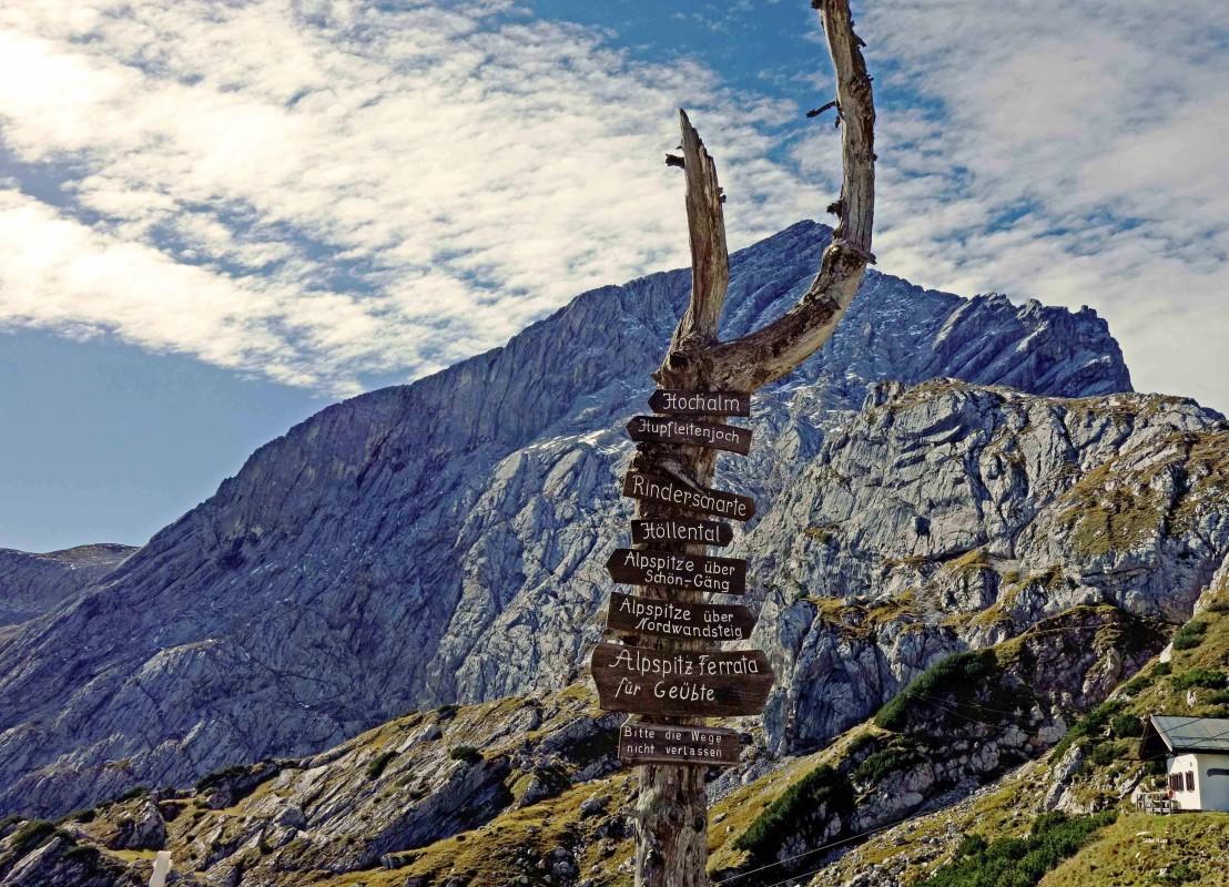 Schilderwald auf der Alpspitze