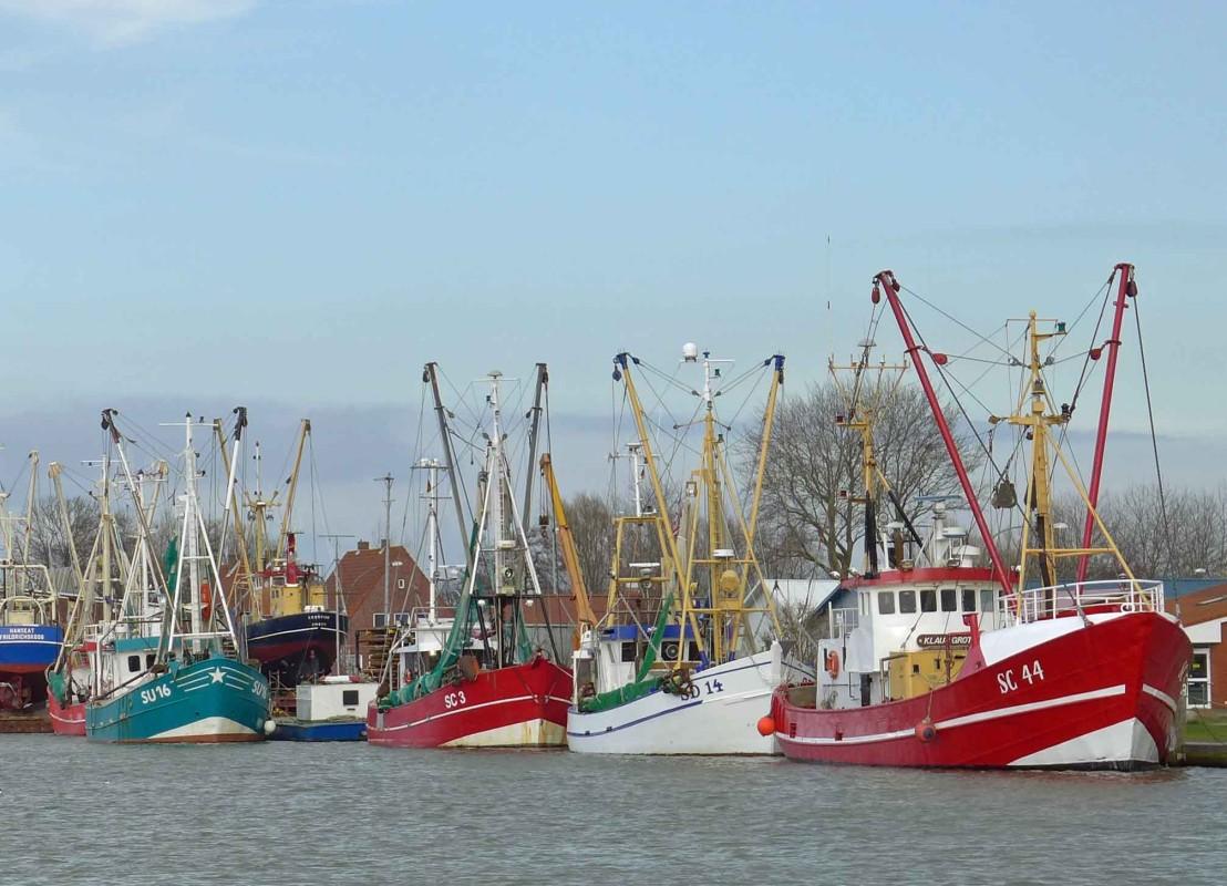 Krabbenkutter im Fischereihafen von Büsum