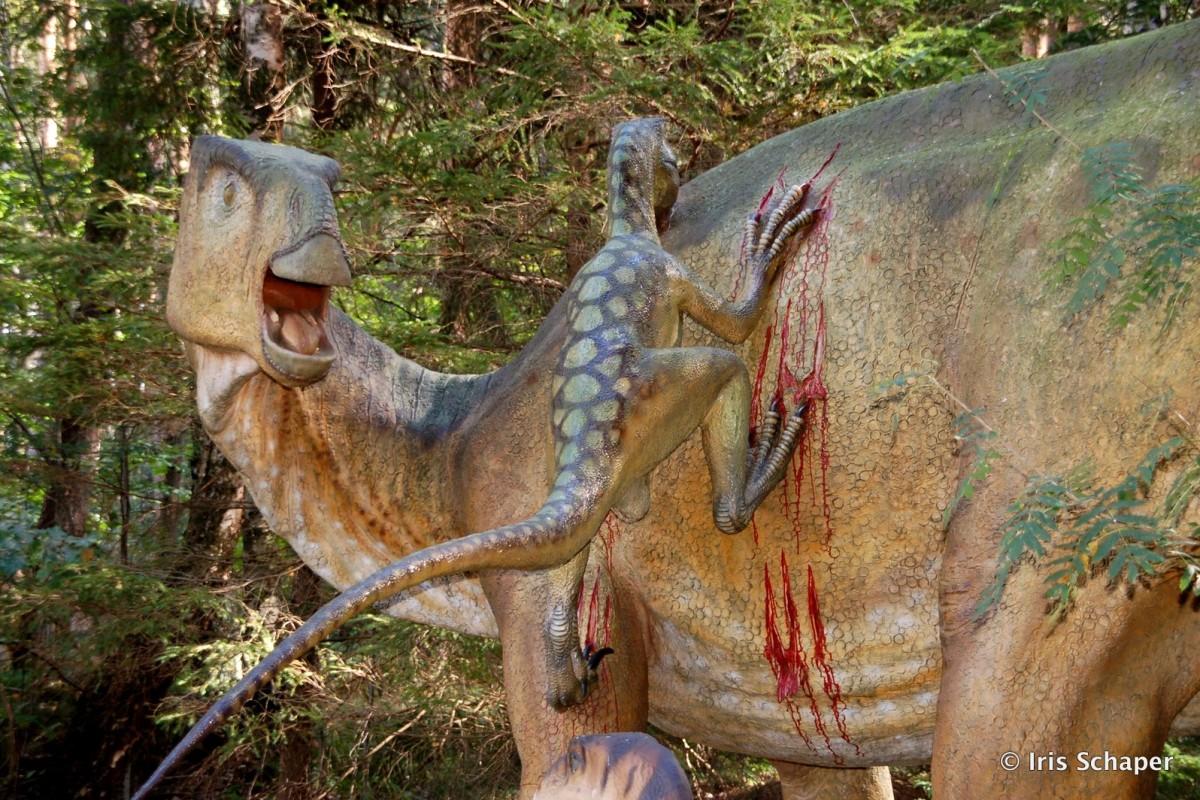 Velociraptorangriff