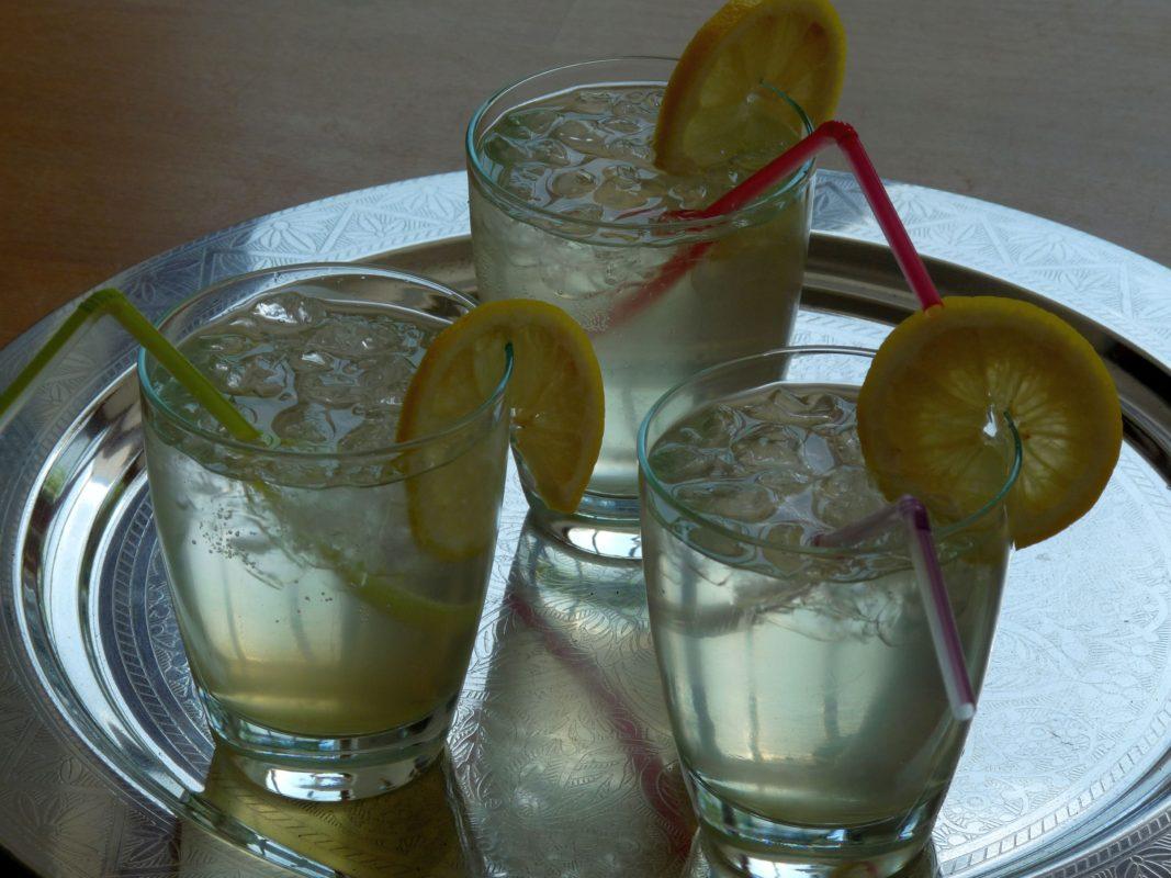 Minz-Zitronen-Sirup6_Reisefeder