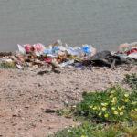Die Sache mit dem Plastikmüll