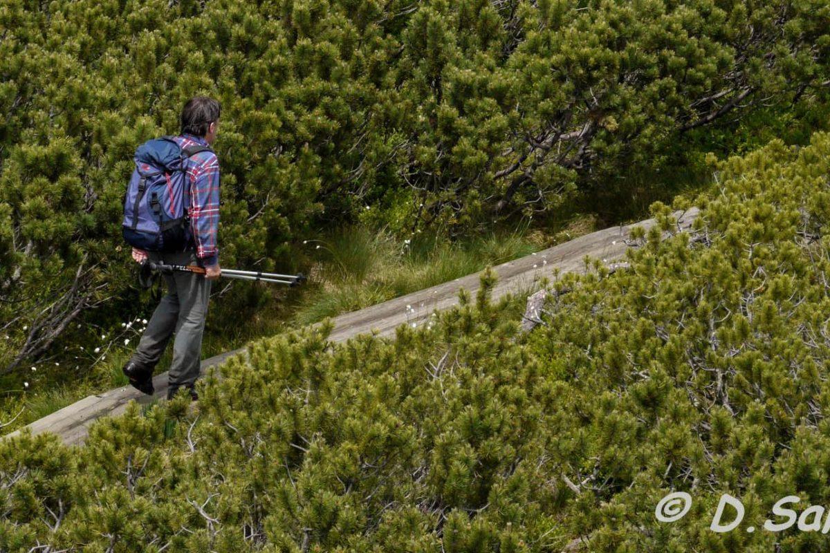 Slowenien: Auf Holzpfaden durch den Naturpark