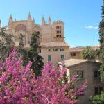 Palma: Süße und herzhafte Leckereien zu Ostern