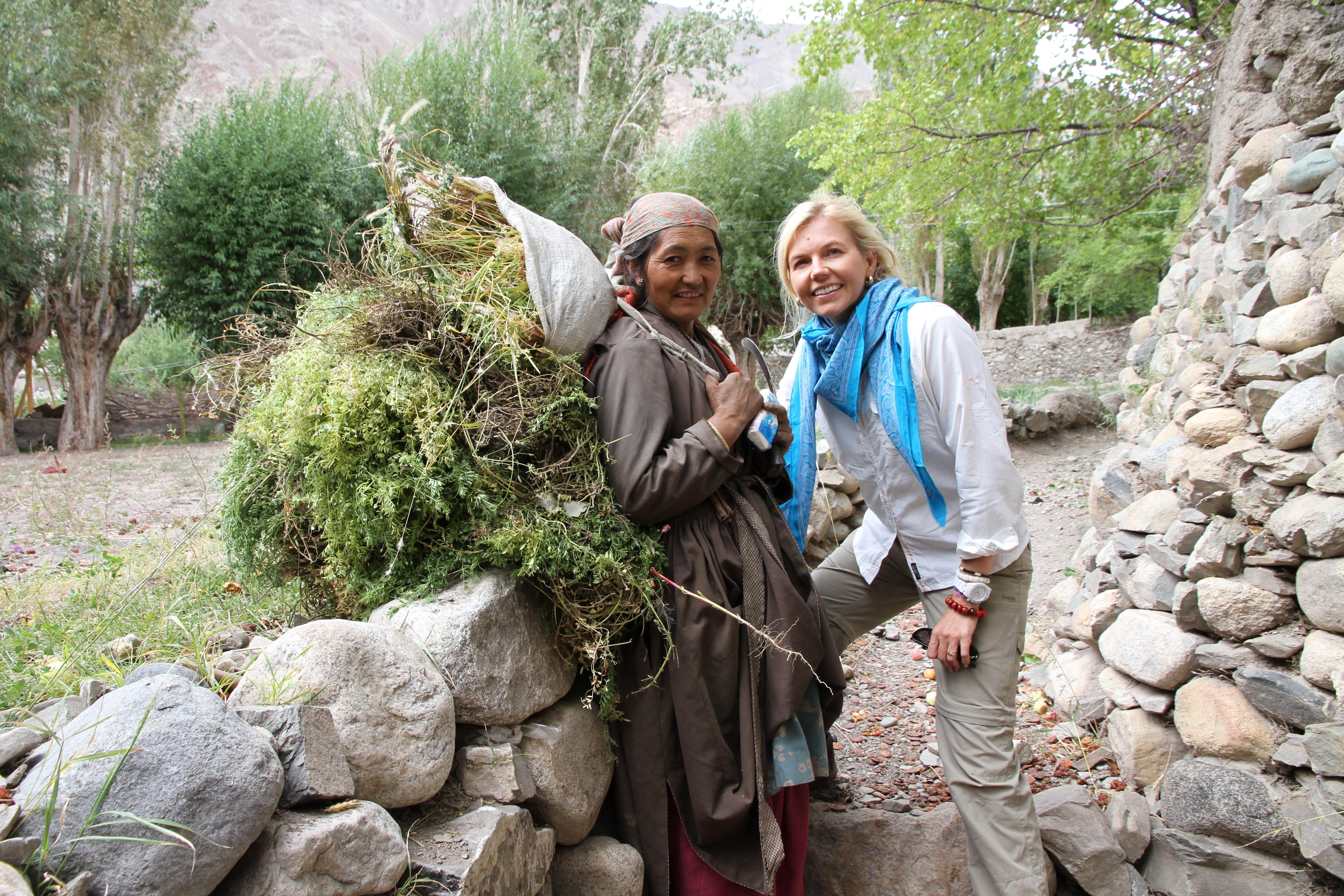Reisen, Indien, Dorf, Ladakh, Land