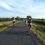 Bordeaux-Region: Mit Wein, Rad und Geschrei