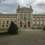 Landesmuseum Hannover: Der Dinosaurier-Ausflugstipp für Regentage