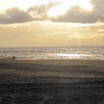 Noordwijk: Gemütlicher Beachclub direkt am Strand
