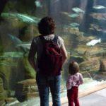 11 Tipps für… Familienziele im Norden, die schlau machen