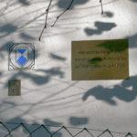 Schilder-Bilder 14: Harry Potter auf Hiddensee – wer weiß was?