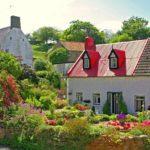 Blumeninsel Guernsey: ein Paradies nicht nur für Mütter